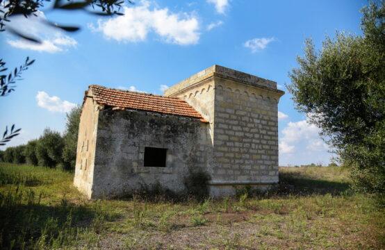 Casa con torretta e oliveto in vendita a martano